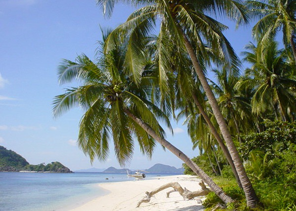 South Pacific Vacation